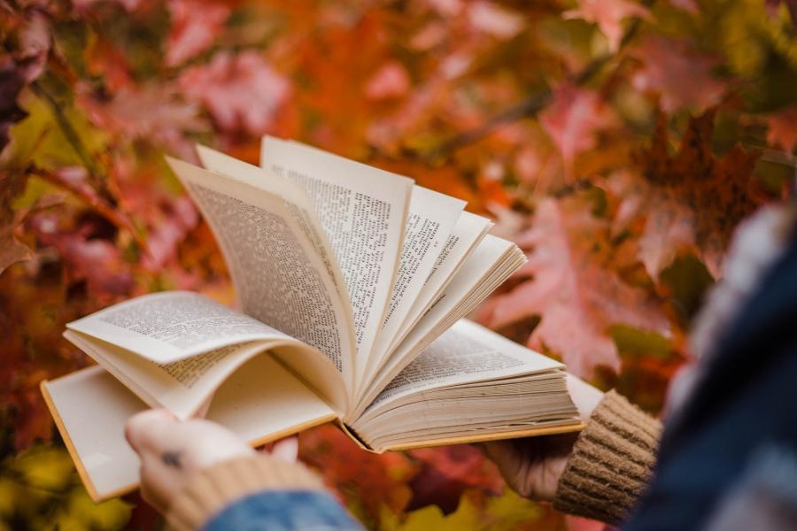 Person der bladrer i en bog